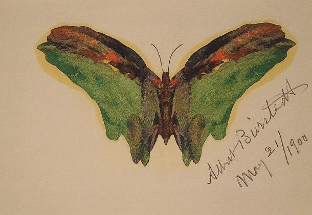 albert-bierstadt-butterfly